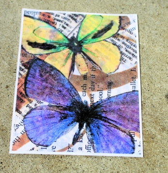 butterfly card with description